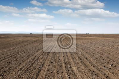 Fototapeta Zaorane dziedzinie krajobraz kraju Wiosną rolnictwa