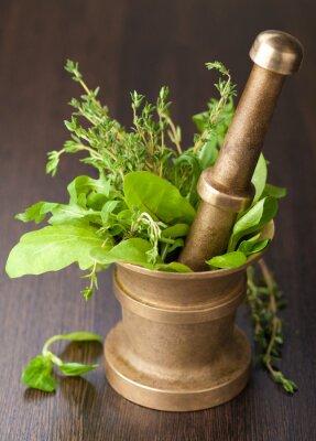 Fototapeta zaprawy miedzi z ziołami