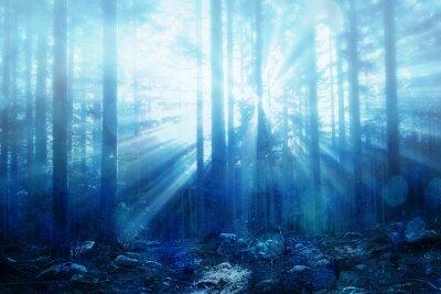 Fototapeta Zatarcie mglisty magiczne promienie słońca z wyrównaniem w krajobrazie leśnym. Piękny kolor niebieski filtr używany.