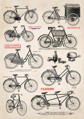 Fototapeta Zbiór ilustracji rocznika rowerów