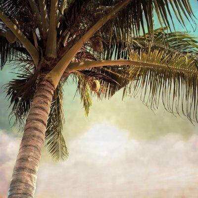 Fototapeta zdjęcia plaża-18