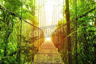 Fototapeta Zdjęcie Arenal Hanging Bridges rezerwat, park ekologiczny naturalnych lasów deszczowych, La Fortuna de San Carlos miasta, Kostaryki, Ameryki Środkowej, kładki w dżungli, podróży i turystyki koncepcji