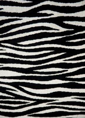 Fototapeta Zebra tkaniny tekstury