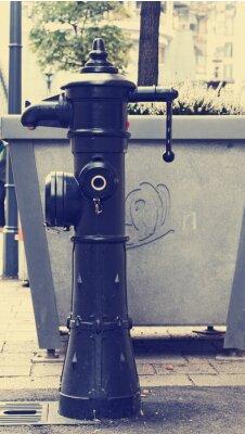 Fototapeta Żeliwne pompy wody na ulicy
