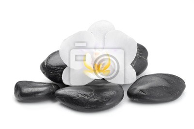 Zen bazaltu kamienie i Orchidea