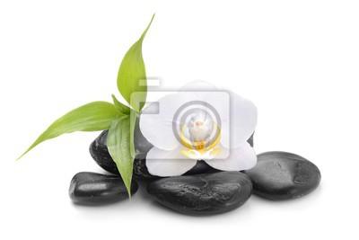 zen kamienie bazaltowe, orchidea i bambusa