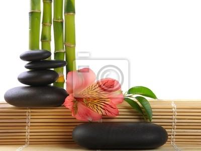 Zen tony
