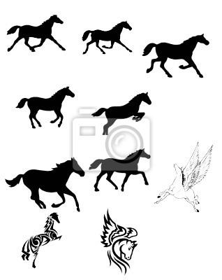 Zestaw Czarny Koń Sylwetka Wektor Tatuaż Fototapety Redro