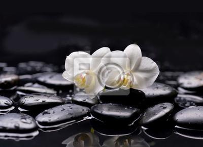 Zestaw dwóch białych orchidei z kamieniami terapii