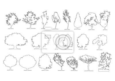 Fototapeta Zestaw elementów graficznych drzew widoków konspektu dla rysunku architektury i krajobrazu. Ilustracji wektorowych