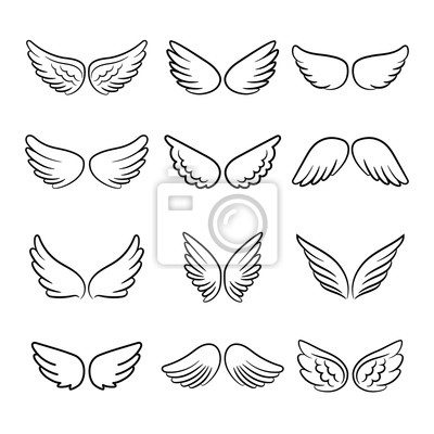 Fototapeta Zestaw ładny skrzydła anioła