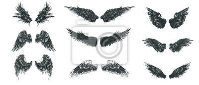 Fototapeta Zestaw skrzydeł. Ręcznie rysowane kolekcja szczegółowe skrzydła.