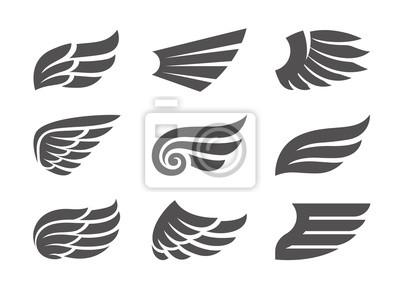 Fototapeta Zestaw Wings Vector