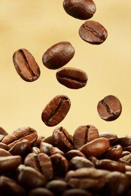 Fototapeta ziarna kawy wchodzące