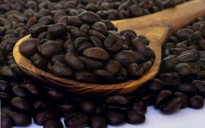Fototapeta Ziarno fasoli kawy.