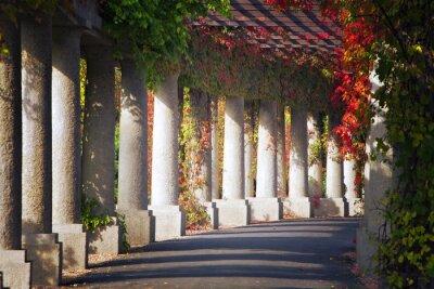 Fototapeta Zielona brama w parku jesienią