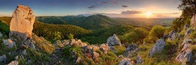 Fototapeta Zielona natura panorama ze słońcem