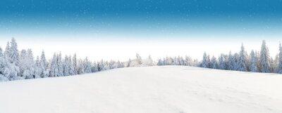 Fototapeta Zimą krajobraz snowy