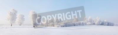 Fototapeta Zima piękna krajobrazu z drzew pokryte szronem