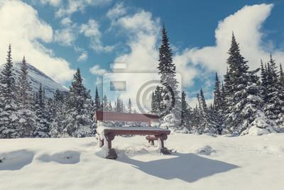 Fototapeta Zima w lodowcowym parku
