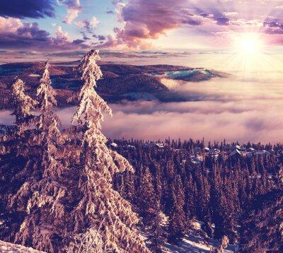 Fototapeta Zima w Norwegii