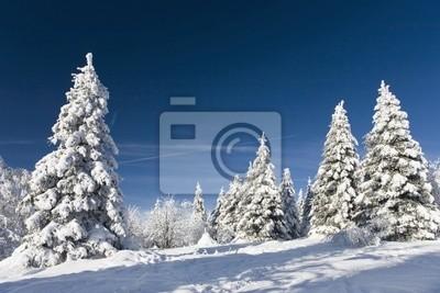 Fototapeta Zimowa opowieść