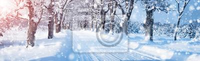Fototapeta Zimowa panorama na drodze przez śnieżny alei