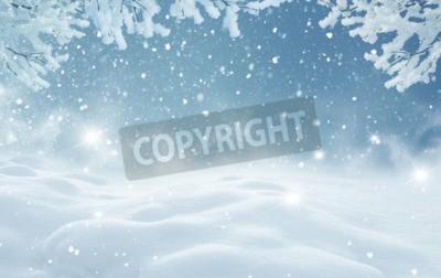 Fototapeta Zimowy krajobraz christmas