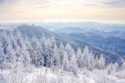 Fototapeta Zimowy krajobraz Czarny Las