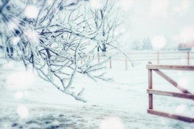 Fototapeta Zimowy krajobraz kraju dzień z zamrożone warkoczki, śnieg i ogrodzenia drewnianego, odkryty charakter tła