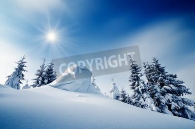 Fototapeta Zimowy krajobraz w słoneczny dzień w górskich lasów Ukraina, Karpaty