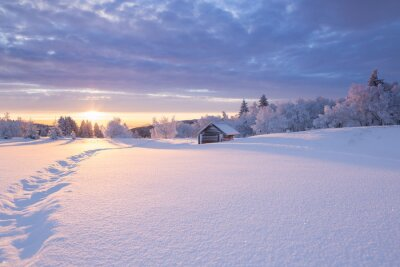 Fototapeta Zimowy krajobraz w złotym słońcu o małej drewnianej chacie w tle