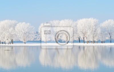 Fototapeta zimowy krajobraz z pięknym odbicia w wodzie