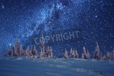 Fototapeta zimowy las i droga mleczna