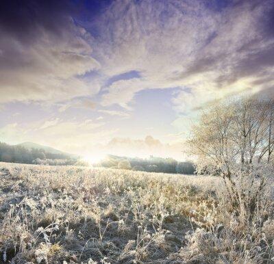 Fototapeta Zimowy poranek - złoty wschód słońca i zamarznięty krajobraz