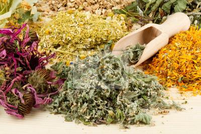 zioła lecznicze na drewnianym stole, medycyny ziołowej
