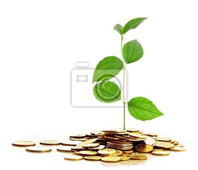 Złote monety i roślin na białym tle.