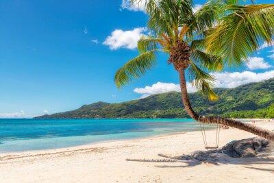 Fototapeta Znana plaża Beau Vallon z palmy kokosowe na wyspie Mahe, Seszele.