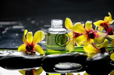 Żółta orchidea z czarnymi kamieniami z butelką oleju, roślin na mokrych kamyczkach