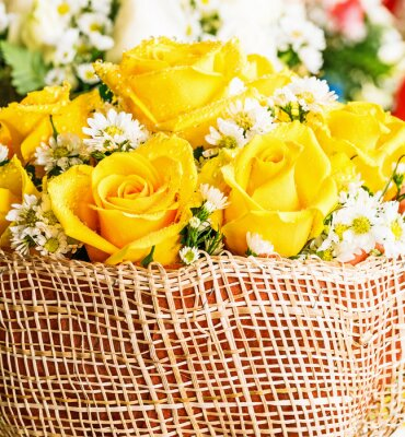 Fototapeta Żółta róża z kropli wody w koszu