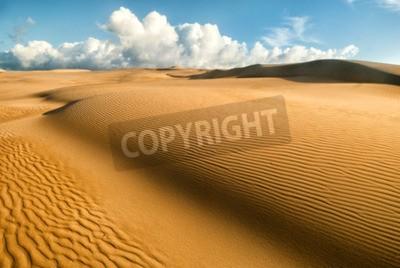 Fototapeta Żółte miękkie wydmy pustyni z wzorami piasku i linie i cienie