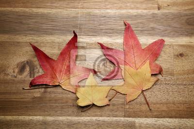 Fototapeta żółty czerwony liści jesienią na tle ciemnego starego drewna