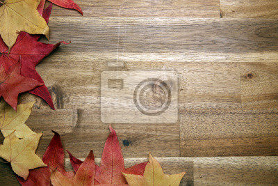 żółty czerwony liści jesienią na tle ciemnego starego drewna