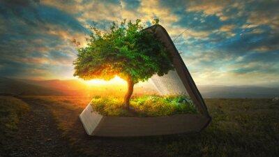 Fototapeta Życie z Biblii