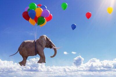 Naklejka 3D Illustration fliegender Elefant mit Luftballons