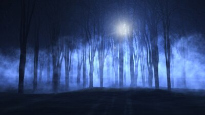 Naklejka 3D mglisty Spooky lasu