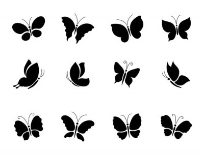 Naklejka A set of different butterfly silhouettes.