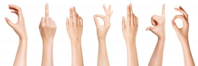 Naklejka A set of hand gesture isolated on white.