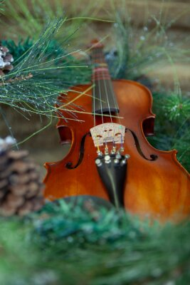 Naklejka a violin laying among evergreen branches and pinecones