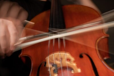 Naklejka A young cellist practices intensely in this close up high resolution photo of strings, cello, and bow